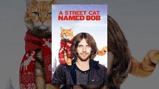 Download A Street Cat Named Bob Video