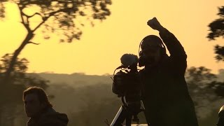 Download A day in the life of a wildlife cameraman Video