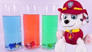 Download PAW PATROL Science Experiment Learning COLORS - Paw Patrol Full Episodes Video