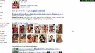 Download Google Image Search to Spot Fake Profiles.mp4 Video