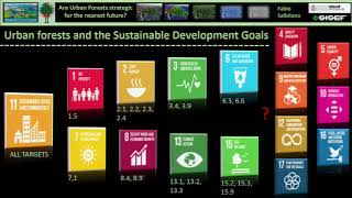 Download Urban and peri-urban forests and green spaces and the Sustainable Development Goals: A Tree Talk Video
