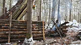 Download Solo Bushcraft Camp. 2 Nights in the Snow - Natural Shelter, Minimal Gear. Video