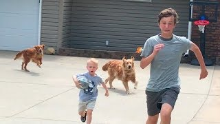 Download Drive by Dunk Challenge (Chased by dogs) | That's Amazing Video