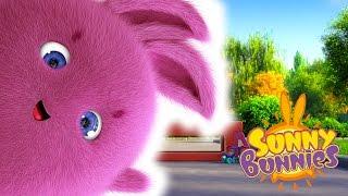 Download Cartoons for Children | Sunny Bunnies FUN DAY OUT | Funny Cartoons For Children Video