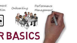 Download An Animated Introduction to the Key HR Functions Video