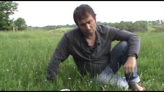 Download Blog de Guérissuer 08:05:14 Video