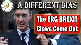 Download The ERG Get Ready for Brexit End Game Video