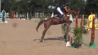 Download CSO Hopital Le Grand 24.08.16 Amateur 2CP 110cm Axelle&Vals Video