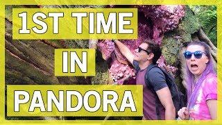 Download Animal Kingdom - First Visit to Pandora! Video