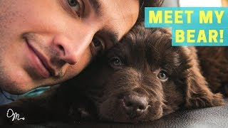 Download MEET MY BEAR PUPPY! | Health Benefits of Having a Dog | Doctor Mike Video