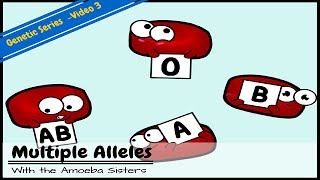 Download Multiple Alleles (ABO Blood Types) and Punnett Squares Video