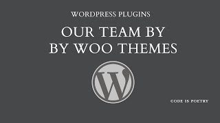 Download WordPress Plugins: Our Team by Woo Themes Video