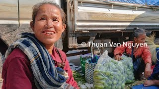 Download Laos || Savanxay Market || Savannakhet Province Video