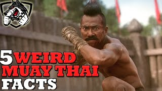 Download 5 Crazy Muay Thai Facts You've Never Heard! Video