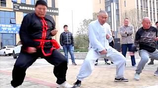 Download Kung Fu Fools & Martial Art Fails Video