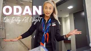 Download The Life Of A Flight Attendant | Prepping My Hotel Room | Vlog 49 Video