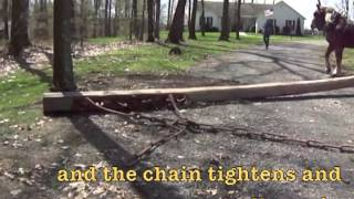 Download Temple Family Farm Stump Puller Video