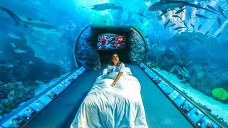 Download If I Lived in an Aquarium Video