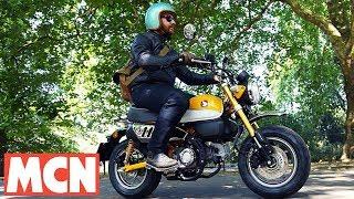 Download Honda Monkey Bike   First Ride   Motorcyclenews Video