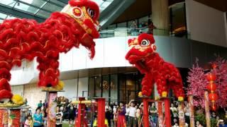 Download CNY2017 ~ Acrobatic Lion Dance (múa lân 高樁舞獅) by Kwong Ngai 光藝 @ The Starling (21/1/2017) 4K UHD Video