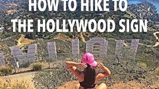 Download How to Hike to the Hollywood Sign Video