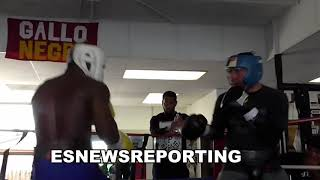 Download Tevin Farmer Moves Like A Cat In Sparring - esnews boxing Video