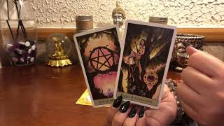 Download *DAILY READING* Monday 1•14•19 Soulmate Twinflame Video