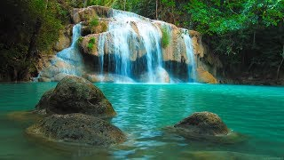 Download Musique Douce: Relaxante, Calme - Nature Relaxation Video