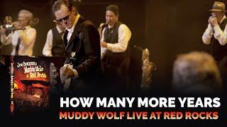 Download Joe Bonamassa - How Many More Years - Muddy Wolf at Red Rocks Video