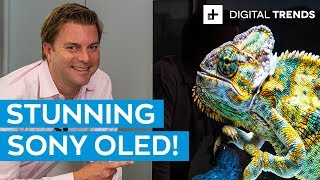 Download Sony A9G 4K HDR OLED TV Unboxing and Basic Setup Video