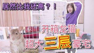 Download 【開箱】龍貓三層大豪宅?!居然比我還要高... Video
