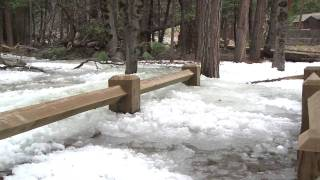 Download Yosemite Nature Notes - 9 - Frazil Ice Video