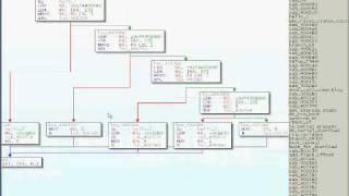 Download The Embedded DisAssembler Demonstration Video