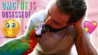 Download MY PARROT REACTS TO THE PRESENT HE HAS BEEN WAITING FOR YEARS FOR Video
