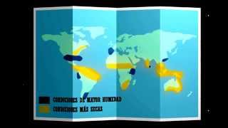 Download El Niño de 2015-2016 (Español) Video