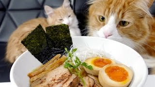 Download Homemade Ramen Video