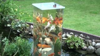 Download Mein Koi Aussichtsturm im Gartenteich - bei Tag (4) Video