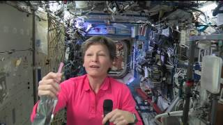 Download Space Station Crew Member Discusses Life in Space with Texas Students Video