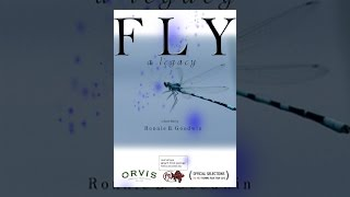 Download Fly A Legacy Video