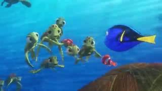 Download Finding Dory EVERY MOVIE CLIP - 2016 Pixar Animation Video