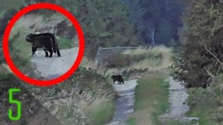 Download 5 Mysterious Photos that Solved Forgotten Mysteries Video