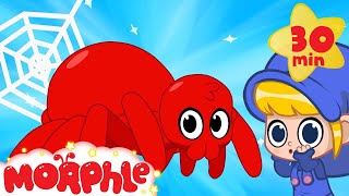 Download My Scary Pet Spider! Morphle becomes a spider superhero! My Magic Pet Morphle Animation for kids Video