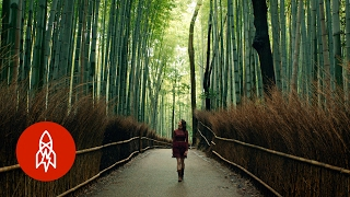 Download A Spirited Journey to Kyoto's Most Isolated Restaurant Video