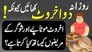 Download Benefits Of Eating Walnut (Akhrot Khane Ke Fayde) Urdu Hindi | Urdu Lab Video