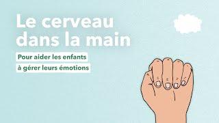 Download Le cerveau dans la main, une animation pour aider les enfants à gérer leurs émotions Video