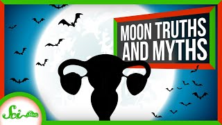 Download 8 Truths and Myths About the Full Moon Video