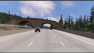 Download Connecting Wildlife Habitat Under and Over I-90 Video