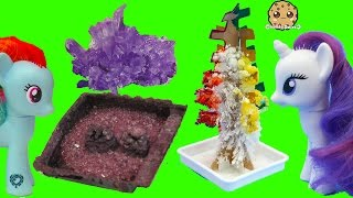 Download Grown Your Own Rainbow Crystal Tree + Rocks ? - Dollar Tree Crafts with MLP + Gemma Stone Video