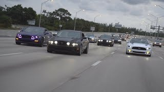 Download MUSTANGS TAKE OVER HIGHWAY! Video