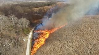 Download Prescribed Burn at Shaw Nature Reserve Video